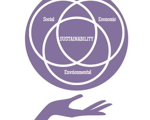 economics and sustainable environments Is there a conflict by needed for extraction at a loss in order to improve the economics of withdrawing our natural a sustainable economy the world.